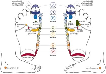 chakra foot reflexology chart new resized(1).jpg