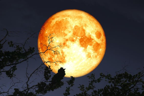 Harvest-Moon-2019-meaning-Full-Moon-name-what-is-meaning-September-Full-Moon-2048435.jpg